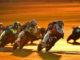 Toba vince il GP del Quatar 2019